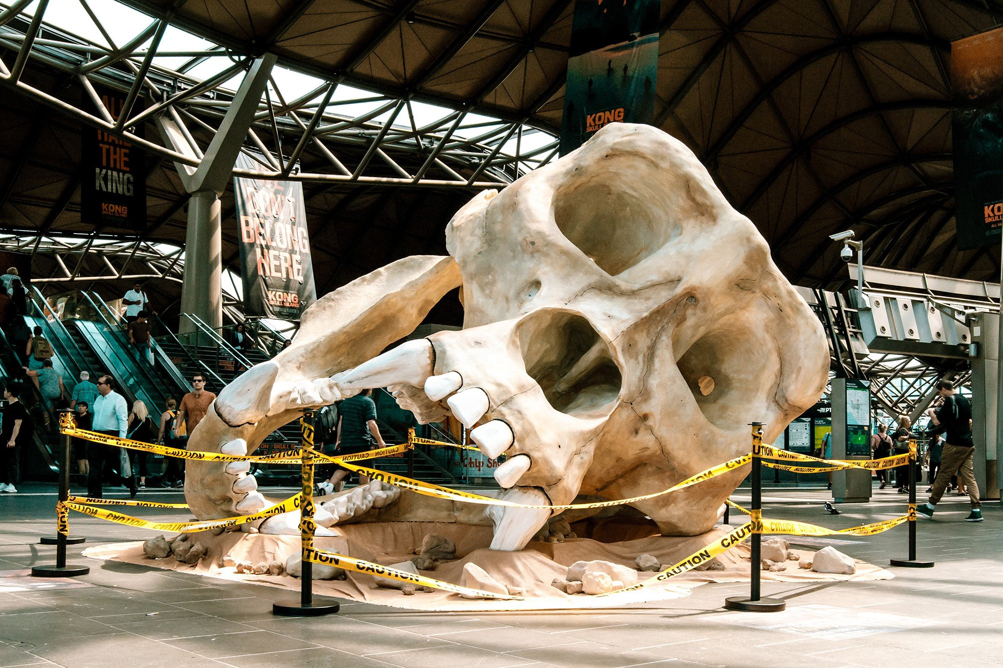 Kong: Skull Island: JC Decaux Drops Skull In Melbourne Ahead Of Kong: Skull